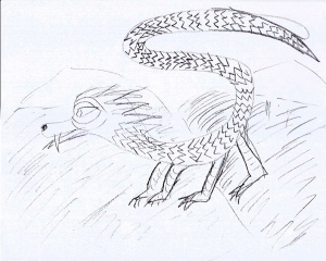 Dorothy sketched this creature.